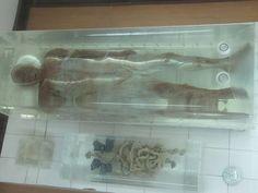 Jingzhou Mummy   Flickr - Photo Sharing!