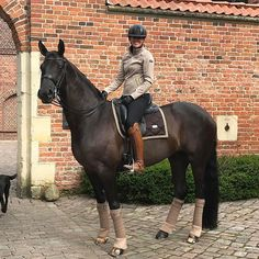 The dream outfit and horse #horse #horses #equestrianstockholm #equestrian Equestrian Stockholm now in stock at Equestrian Performance!