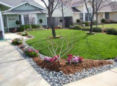 Landscaping front yard with rocks curb appeal garden ideas 43 Ideas Landscaping fron River Rock Landscaping, Landscaping Around Trees, Driveway Landscaping, Landscaping With Rocks, Rock Mulch, Landscaping Design, Driveway Ideas, Luxury Landscaping, Corner Landscaping Ideas