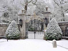 Beautiful gate in winter❣