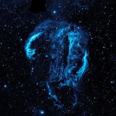 Cygnus Loop Nebula  Wispy tendrils of hot dust and gas glow brightly in this ultraviolet image of the Cygnus Loop nebula, taken by NASA's Galaxy Evolution Explorer. The nebula lies about 1,500 light-years away.
