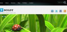 30 Best Free Portfolio WordPress Themes