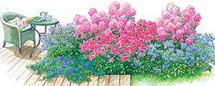 Kleine Staudenbeete zum Nachpflanzen - Seite 2 - Mein schöner Garten