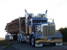 Peterbilt 389 Logging
