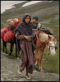 Nomads of Kashmir 4 - near Sona marg, Jammu and Kashmir