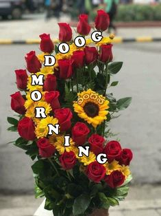 good morning image photo tamil fitrini s wallpaper Nice Good Morning Images, Good Morning Friends Images, Beautiful Morning Messages, Good Morning Dear Friend, Good Morning Beautiful Flowers, Good Morning Roses, Good Morning Cards, Happy Morning, Good Night Greetings