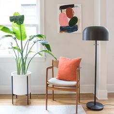 Happy at Home: A Houseplant Care Guide | Schoolhouse Electric