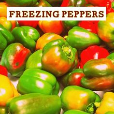 Outdoor and Gardening with Red Hill: How to Freeze Your Peppers