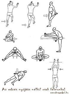Mit gondol, az alábbi képek közül melyik a leghatékonyabb a gerincfájdalmak megelőzésére, kezelésére?