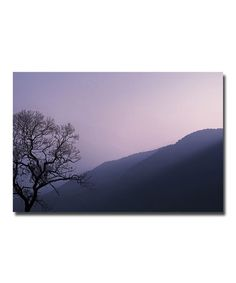 Take a look at this Purple Hours Wall Art by Trademark Global on #zulily today!