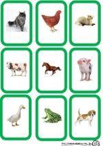 Mon animal secret: Un élève choisit un animal parmi une série de cartes et ses camarades doivent deviner de quel animal il s'agit.  Sur le site il y a le jeu de carte à télécharger et les instructions.
