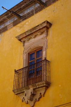 Mexico City & Pure bred beauty, Mexico.Xoloescuincle   http://www.pinterest.com/pin/451626668857169781/