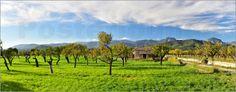 Poster / Leinwandbild Tramontana Gebirge Panorama - Ingo Laue