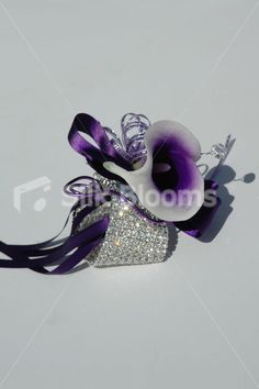 Gorgeous Vibrant Purple Centred White Picasso