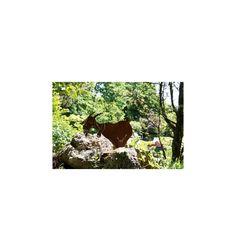 24 cm hoch Metall Edel Rost Dekoration Garten Ziege mit Glocke ca