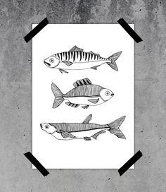 Firrar - Tryckt illustration A4 på Nordic Design Collective