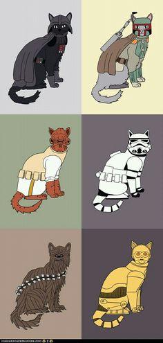 Star Wars...with cats. @Ramiro Croce Croce Croce Garcia Cousinet Allen