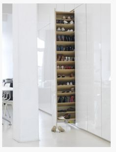 Skoförvaring (kolla Ikea köksskåp)