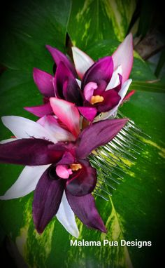 Articles similaires à TROPICAL HAIR COMB - Hawaiian Orchids, Bridal Flowers, Beach Bride, Fascinator, Flower Head piece, Comb, Wedding Hair Accessory,  Hair Clip sur Etsy