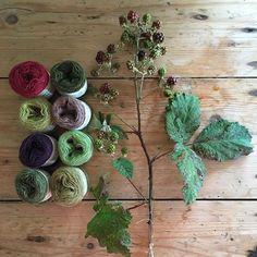 Billedresultat for plantefarvet garn