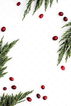 Seasonal Holiday Collection #31