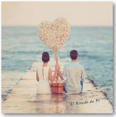 El amor es como una planta sino la riegas y la mimas todos los días se muere.