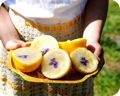 We poured the lemonade that we did not drink immediately into these lemon cups and topped them with fresh violets, set them into the freezer and later in the day we had lemon ice picnic style in the yard.