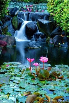Lotus blossom waterfall in Bali, Indonesia. I love Bali. It is one of the places in the world that I will always go back to. Beautiful World, Beautiful Places, Beautiful Pictures, Wonderful Places, Amazing Places, Beautiful Live, Peaceful Places, Beautiful Scenery, Beautiful Waterfalls
