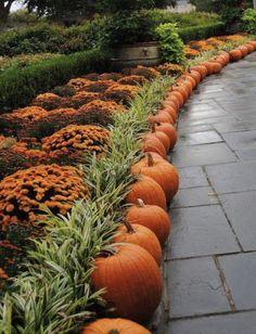 Autumn Garden, Autumn Home, Autumn Fall, Pumpkin Garden, Fall Mums, Autumn Harvest, Harvest Time, Fall Diy, Jardin Decor