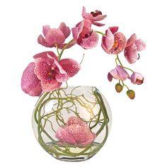 Faux Fuchsia Phalaenopsis Orchid | Joss & Main