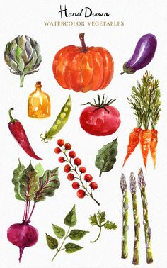 Watercolor vegetables & fruits by MoleskoStudio on Watercolor Fruit, Watercolour Painting, Watercolor Flowers, Watercolor Artists, Painting Art, Watercolors, Vegetable Drawing, Vegetable Painting, Botanical Illustration