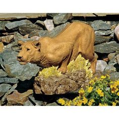 Design Toscano Lioness on the Prowl Statue - DB383079