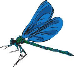 Dragonfly Art Clip Art