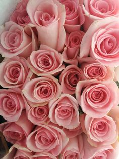 Beautiful pink roses to brighten up the day (www.ladylikestyle.com) #flowers #pink #roses #pretty