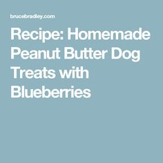 Recipe: Homemade Peanut Butter Dog Treats with Blueberries