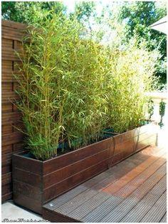 Deck Planters, Garden Planter Boxes, Privacy Landscaping, Modern Landscaping, Backyard Garden Design, Backyard Patio, Back Gardens, Outdoor Gardens, Japanese Garden Design