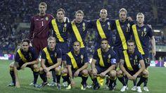 UEFA Euro 2012, group C - Sweden.