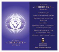 Third Eye Chakra http://www.yourshakti.com