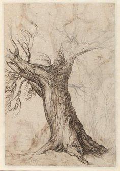 1 oktober 2014: Het Rijksmuseum Amsterdam verwerft een tekening van Jacques de Gheyn II - Vereniging Rembrandt