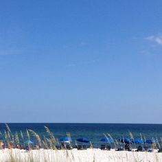 white sand beaches ... sea oats ... blue gulf ...blue skys .... beach umbrella chairs... can't wait