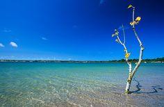 Lagoa do Carcará - RN