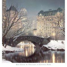 Art.com Twilight in Central Park