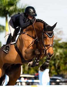 Cute Horses, Horse Love, Beautiful Horses, Show Jumping Horses, Show Horses, Horse Photos, Horse Pictures, Andalusian Horse, Friesian Horse