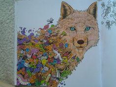 Fox ♥♡♥
