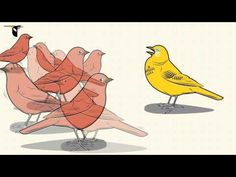 ▶ Speciation: An Illustrated Introduction - YouTube