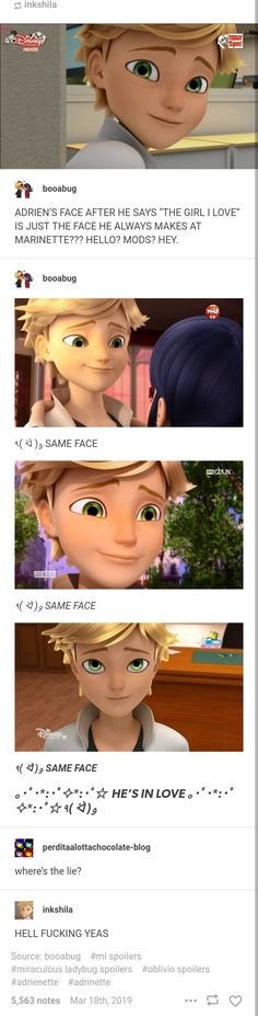 Adrien needs to admit it already OMG Miraculous Ladybug Fanfiction, Miraculous Characters, Miraculous Ladybug Fan Art, Ladybug Y Cat Noir, Meraculous Ladybug, Ladybug Comics, Ladybugs Movie, Marinette And Adrien, Kids Tv Shows