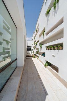 vertical garden / Una Casa de Nichos / Ayeneh Office