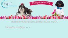 Miesiąc kobiet z APL Health and Happiness