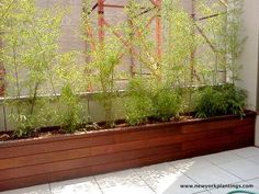 Outdoor planters or Garden planters by New York plantings | Flickr - Photo Sharing!