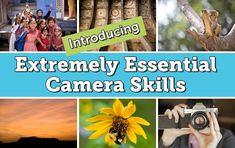 Extremely Essential Camera Skills -- Paid course, but it looks like a great course for beginning photographers